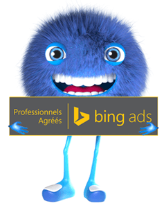 Experts Bing Ads